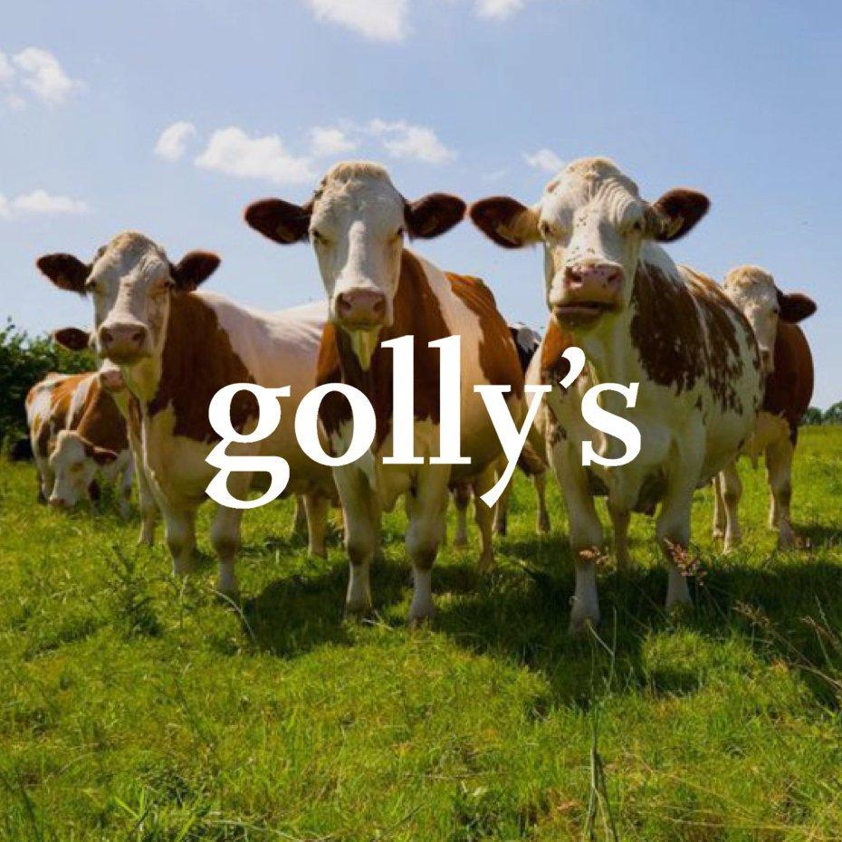 Referenz Golly's